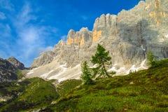 Alta Via in Dolomiet Royalty-vrije Stock Foto