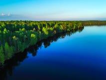 Alta vista del golfo di Finlandia, della foresta e delle isole al tramonto Immagine Stock