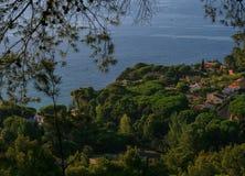 Alta vista del lungonmare delle ville dei milionari circondate dalla conifera fotografia stock