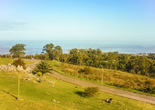 Alta vista del parco e della costa a Montevideo Fotografia Stock
