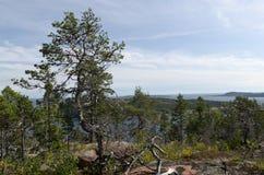 Alta vista della costa Fotografia Stock