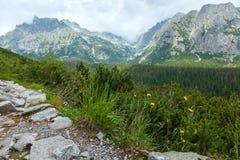 Alta vista di estate di Tatras (Slovacchia). Immagine Stock