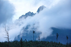 Alta vista di estate di Tatras (Slovacchia) Fotografie Stock Libere da Diritti