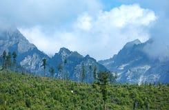 Alta vista di estate di Tatras (Slovacchia) Fotografia Stock
