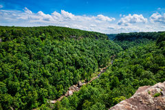 Alta vista di poco canyon Federal Reserve del fiume Fotografia Stock Libera da Diritti