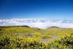 Alta vista a La Palma Immagini Stock Libere da Diritti