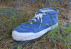 Alta zapatilla de deporte del tobillo viejo en hierba Foto de archivo libre de regalías