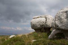 altai山蘑菇自然现象俄国石头 库存图片