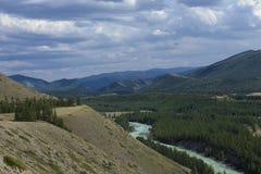 altai日持续山夏天 河Argut 美好的高地横向 russ 免版税库存图片