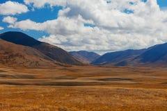 altai日持续山夏天 美好的高地横向 俄国 西伯利亚 免版税图库摄影