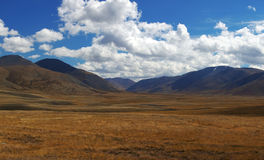 altai日持续山夏天 美好的高地横向 俄国 西伯利亚 库存图片