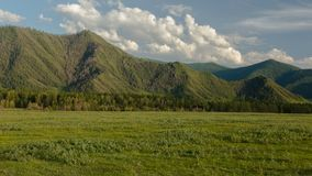 altai日持续山夏天 美好的高地横向 俄罗斯西伯利亚 Timelapse 股票录像
