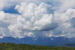 altai日持续山夏天 美好的高地横向 西伯利亚 免版税库存照片