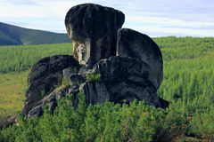 Altai本质 图库摄影