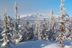 altai横向山冬天 库存照片