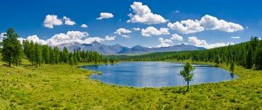altai湖山全景俄国 免版税库存照片