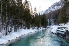 altai联邦山河俄国西伯利亚冬天 免版税图库摄影