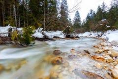 altai联邦山河俄国西伯利亚冬天 免版税库存照片