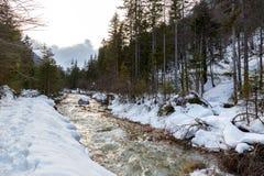 altai联邦山河俄国西伯利亚冬天 免版税库存图片