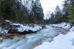 altai联邦山河俄国西伯利亚冬天 库存图片