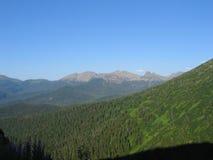 Altai, Ρωσία Στοκ φωτογραφία με δικαίωμα ελεύθερης χρήσης