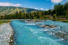 Το τοπίο Altai με τον ποταμό βουνών και τους πράσινους βράχους, Σιβηρία, Δημοκρατία Altai, Ρωσία στοκ εικόνες