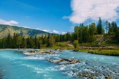 Το τοπίο Altai με τον ποταμό βουνών και τους πράσινους βράχους, Σιβηρία, Δημοκρατία Altai, Ρωσία στοκ φωτογραφίες με δικαίωμα ελεύθερης χρήσης