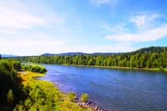 altai河 库存照片