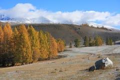 Altai山 免版税库存图片