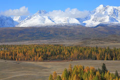 Altai山 库存照片