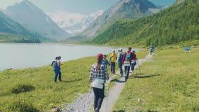 Altai, Akem, RUSLAND - Juni, 20, 2018: de voet van de berg Belukha Koude Bergrivier huidig Drempel op rivier stock video
