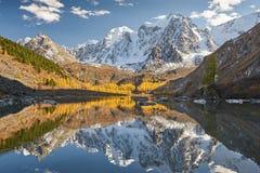 Altai berg, Ryssland, Sibirien arkivfoto