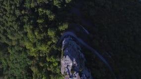 Altai berg som tas bort från surret skjutit Flyg- sikt till landskapet av den gröna dalen som översvämmas med ljus med frodigt stock video