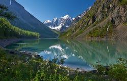 Altai-Berge Stockfotos