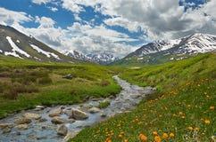 Altai-Berge Stockbilder