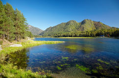 Altai Chemal reservoir Stock Images