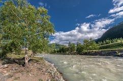 Altai. Chuya river, Altai Royalty Free Stock Images