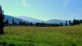 altai duże krajobrazowe halne góry Fotografia Stock