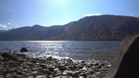 altai Dwa wideo w jeden Żółci namiotów koszty na banku halny jezioro zdjęcie wideo