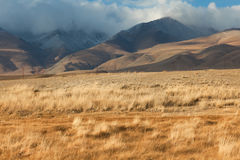 Altai foothill steppes Royalty Free Stock Images
