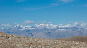 Altai foothill steppes Royalty Free Stock Photo