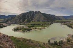 Altai, fusie Chui en Katun Stock Fotografie