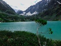 Altai jezioro Zdjęcie Stock