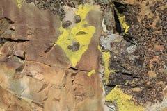 Altai kamienie Zdjęcia Royalty Free