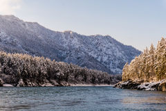 altai katun山河俄国 风景一个的冬天 免版税库存照片