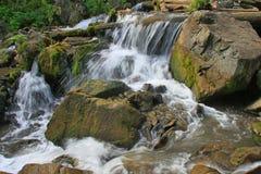 Altai Katun flod Royaltyfri Bild