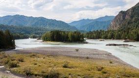 altai katun region rzeczny Russia Siberia Obrazy Stock