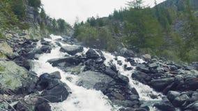 Altai, Kucherla, Rússia - junho, 20, 2018: rio frio da montanha atual Ponto inicial no rio Rochas e árvores Azul claro video estoque