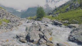 Altai, Kucherla, Rusland - Juni, 20, 2018: koude bergrivier huidig Drempel op rivier Rotsen en bomen Duidelijk blauw stock video