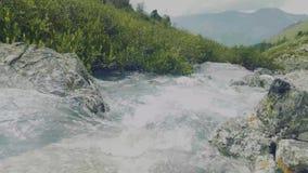 Altai, Kucherla, Rusland - Juni, 20, 2018: koude bergrivier huidig Drempel op rivier Rotsen en bomen Duidelijk blauw stock videobeelden